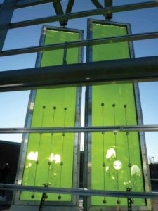 SolarLeaf bio-reactive algae façade © ColtArupSCC